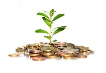 В Череповце социальные предприниматели, обеспечивающие рабочие места для социально-незащищённых групп населения, могут получить грант в размере до полумиллиона рублей