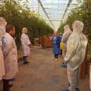 Овощи, выращенные на ТОСЭР «Череповец», презентовали федеральным сетям