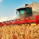 Информация для МСП-сельхозтоваропроизводителей