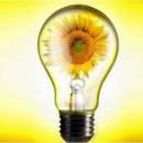 Стартовал отборочный тур второго Всероссийского конкурса реализованных проектов в области энергосбережения и повышения энергетической эффективности ENES